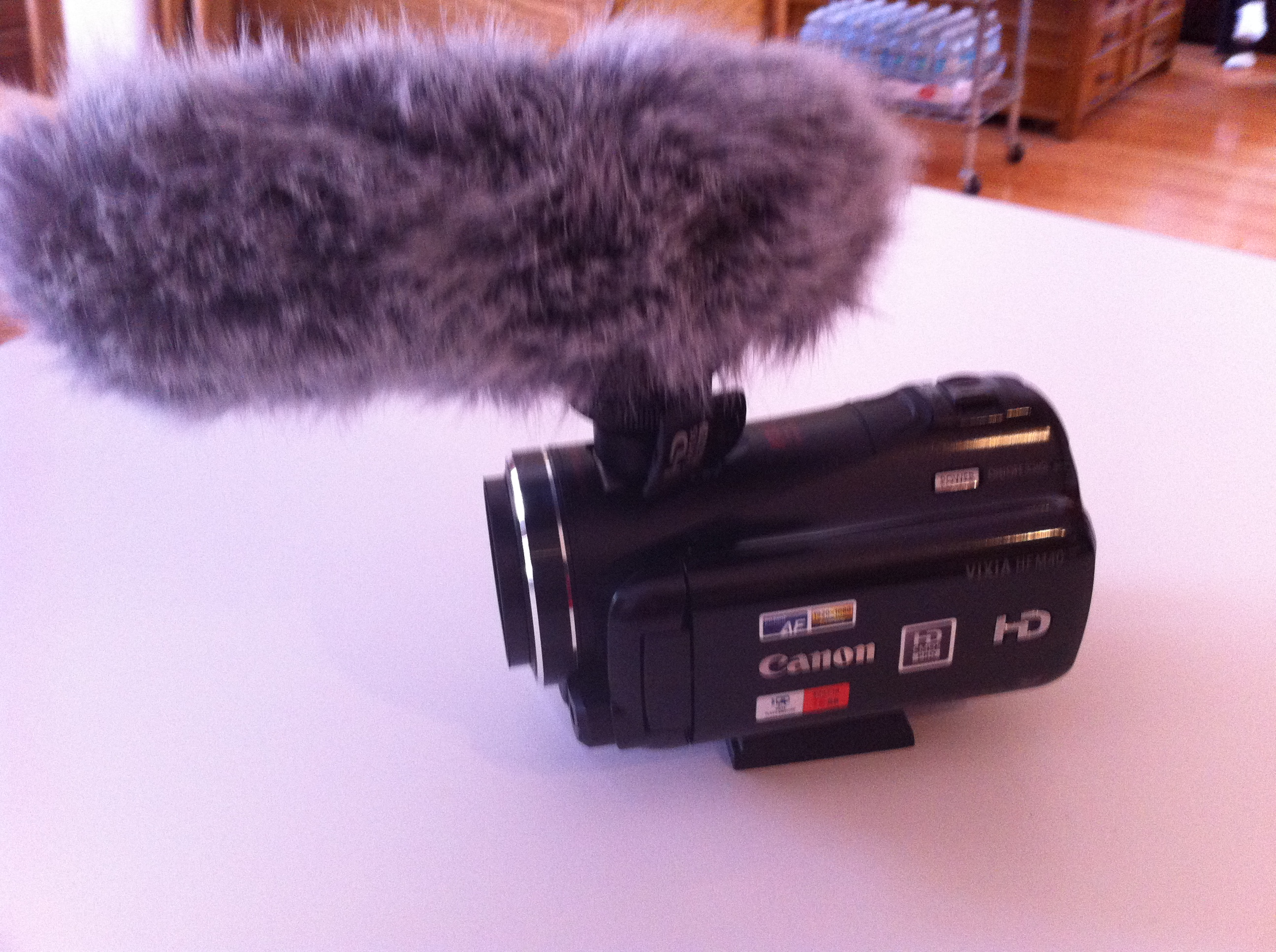 Morgana's Canon camcorder